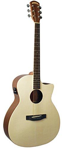 Morgan Monroe MG-505N/E エレアコ アコースティックギター アコギ ギター (並行輸入)