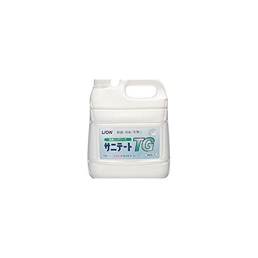 サスペンド手当速度業務用 サニテートTG 4L