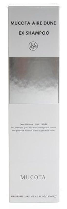 縞模様のイブムコタ アデューラアイレレデューンEX シャンプー 250ml