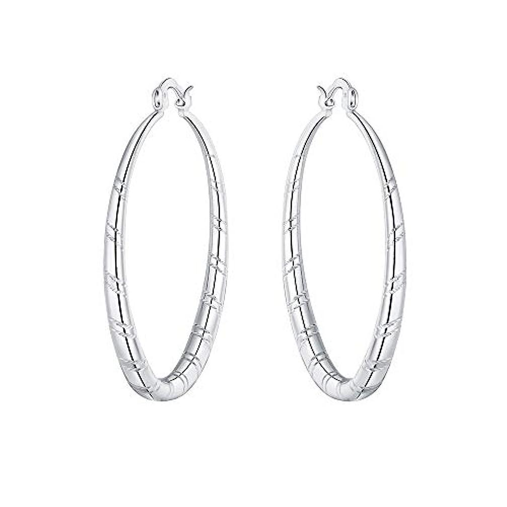 トランクあらゆる種類の公園Nicircle 女性 シルバー スタッドブラブライヤリングファッションクラシックブラブライヤリング Women Silver Stud Dangle Earings Fashion Classic Dangle Earring