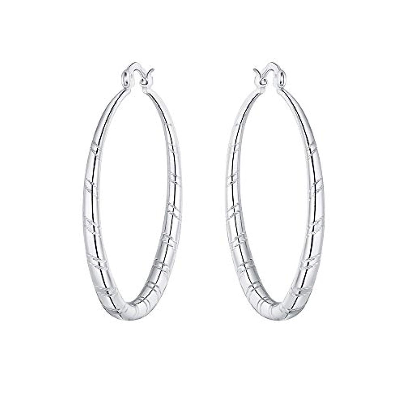 本質的に洗練回復Nicircle 女性 シルバー スタッドブラブライヤリングファッションクラシックブラブライヤリング Women Silver Stud Dangle Earings Fashion Classic Dangle Earring