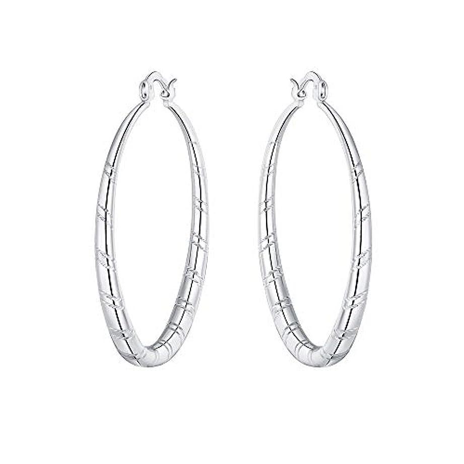 唯一ペパーミント削減Nicircle 女性 シルバー スタッドブラブライヤリングファッションクラシックブラブライヤリング Women Silver Stud Dangle Earings Fashion Classic Dangle Earring