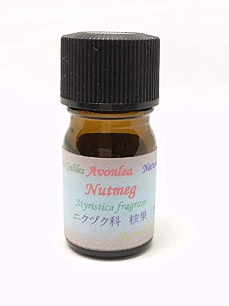 強調する鎮静剤数学ナツメグ 100% ピュア エッセンシャルオイル 高級精油 10ml
