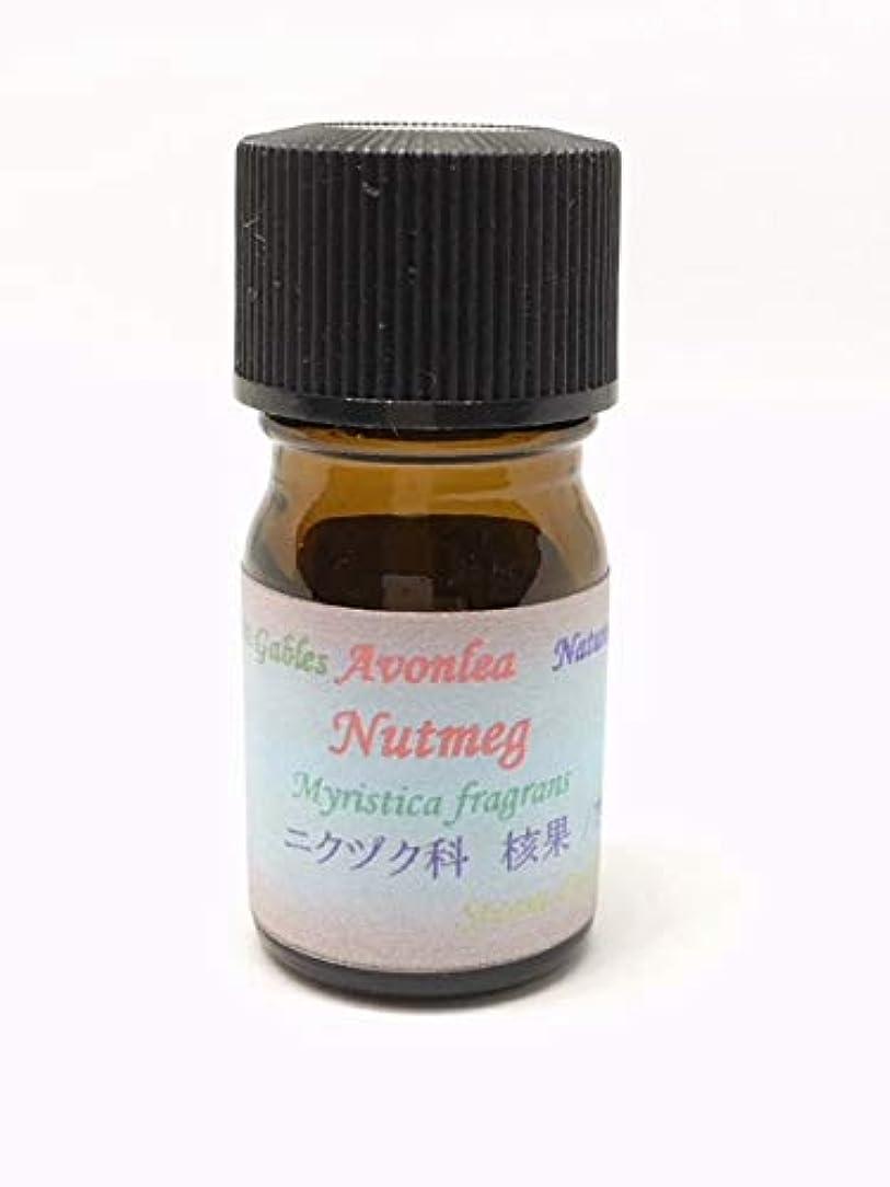 罪不従順酸化物ナツメグ 100% ピュア エッセンシャルオイル 高級精油 15ml Nutmeg