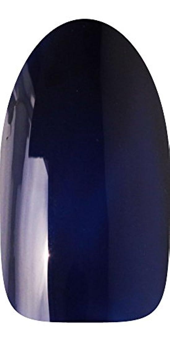 アクセント座標限られたsacra カラージェル No.020 藍