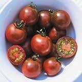 [濃えんじ色のおいしいミニトマト 春まき 野菜タネ]トマト:ブラックチェリートマトの種 2袋セット