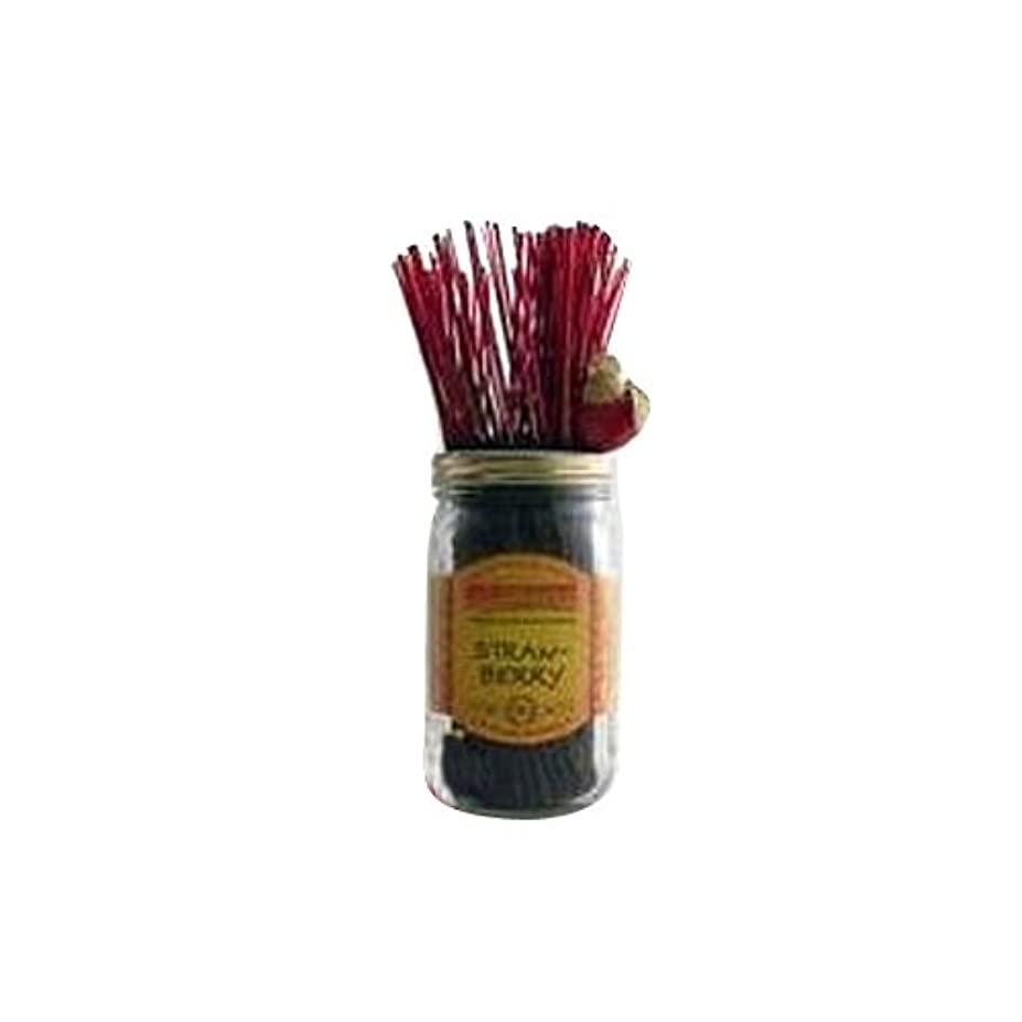 メロン損失シールドWildberry Incense Strawberry 100Pcs by Wild Berry