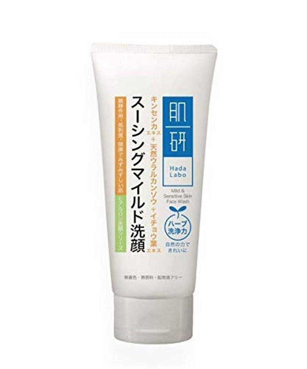 本質的ではない材料生きるHADA LABO 100グラムマイルド洗顔&敏感
