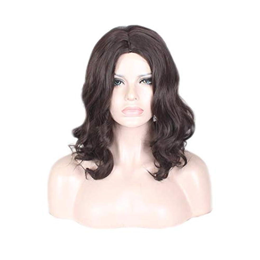 程度介入する不合格JIANFU 女性の長いカーリーヘア高温シルク化学繊維フードブラックウィッグ (色 : 黒)