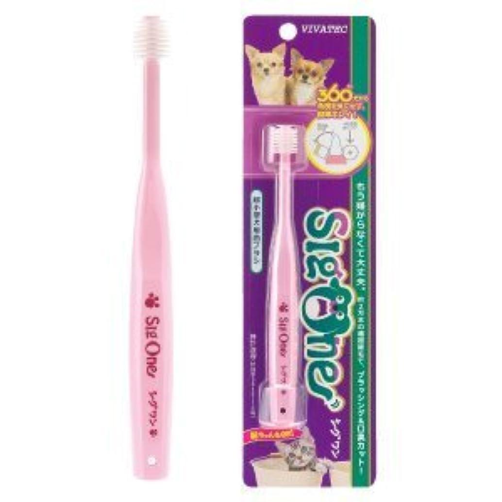 代表して未来誇張するシグワン 超小型犬用歯ブラシ 1本
