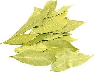 ローレル ローリエ 原型 50g スパイス ハーブ ベイリーフ bay leaf 月桂樹 ロリエ ローリエ