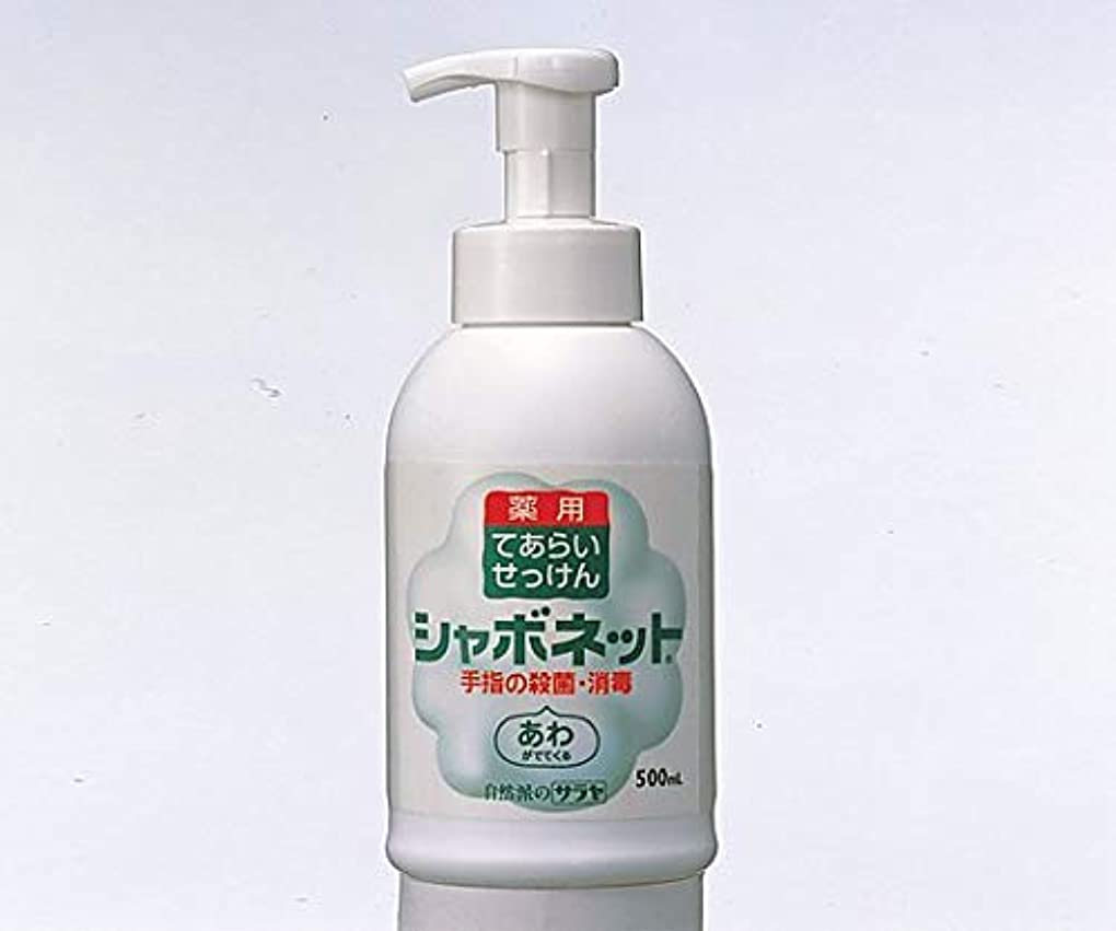 ゲートウェイ啓示新しい意味シャボネットP-5