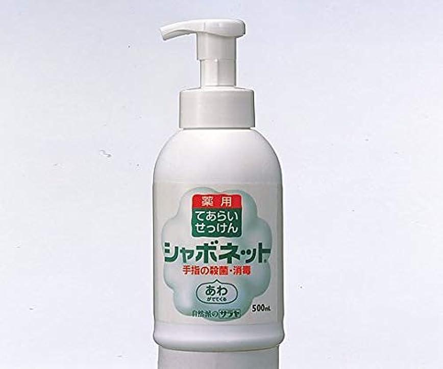 定期的くしゃくしゃイチゴシャボネットP-5
