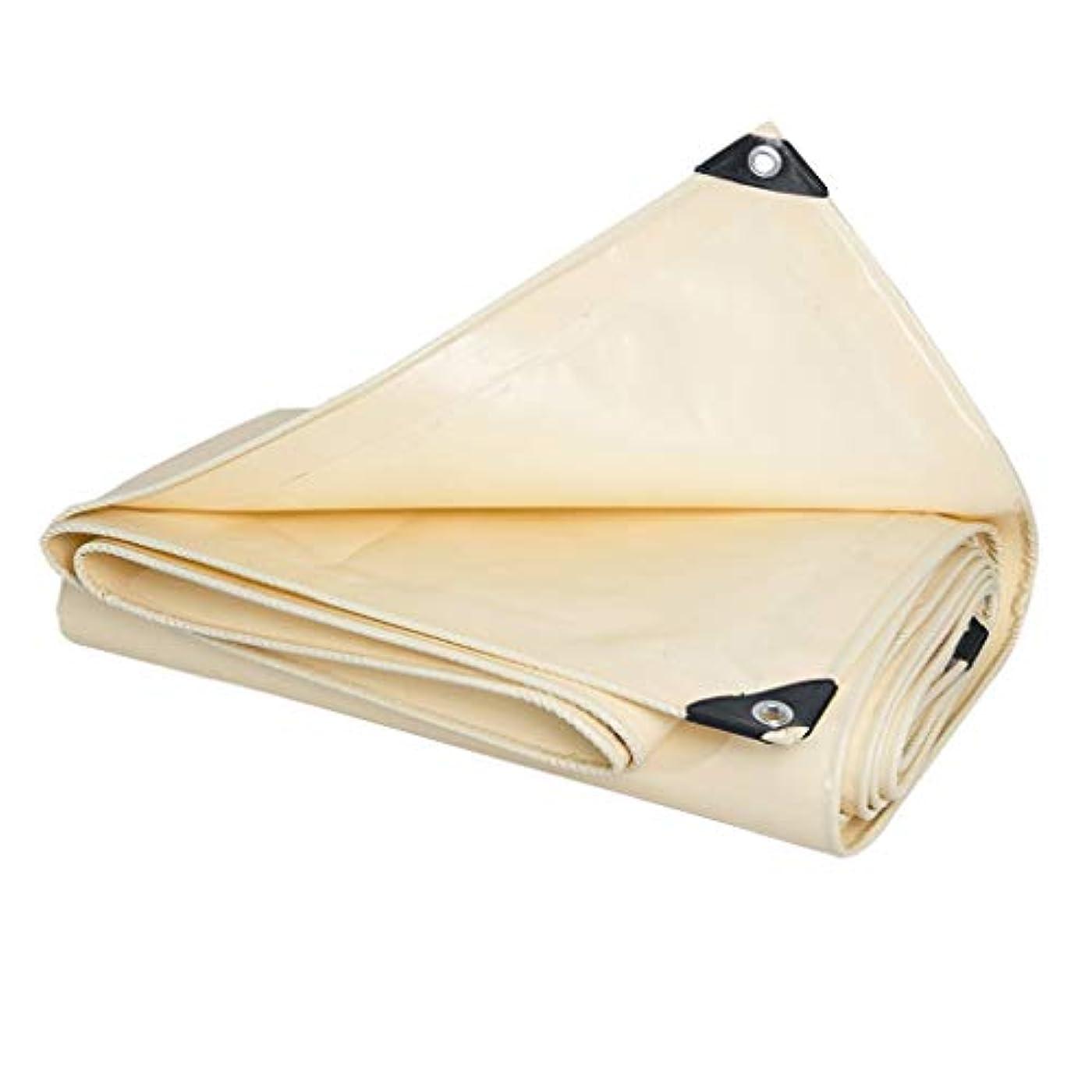 構成する色合いビデオ防雨布clothawning布屋外防水シート日焼け止め防水シートプラスチック日よけシェード厚い防雨 (サイズ さいず : 3m*5m)