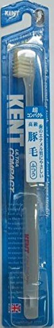 路地労働慣れているKENT(ケント)豚毛歯ブラシ ふつう 超コンパクト