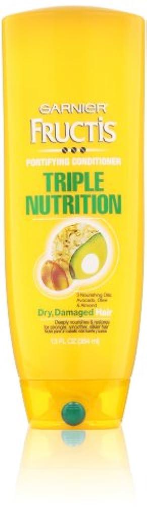 炎上インキュバス解決するGarnier Fructis Fortifying Triple Nutrition Cream Conditioner 384 ml (並行輸入品)