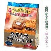 発芽玄米ブランのサンド 9枚