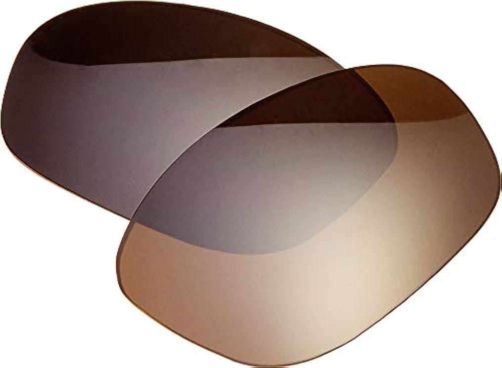 出会いオーケストラ本を読むZERO 自社製 oakley オークリー サングラス 交換レンズ OAKLEY モンスタードグル MONSTERDOGGLE 偏光レンズ