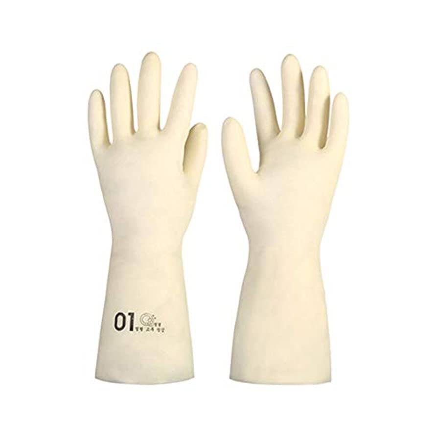 アラーム士気産地BTXXYJP キッチン用手袋 手袋 掃除用 ロング 耐摩耗 食器洗い 手袋 水槽掃除用手袋 (Color : M/1号, Size : M)