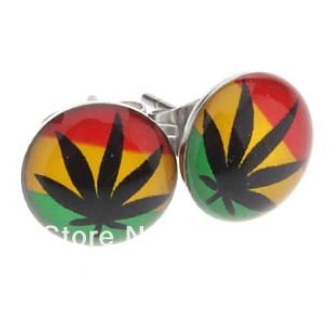 必須オフリマーク10 mm Rasta Flag Marijuanaステンレス鋼メンズスタッドイヤリング