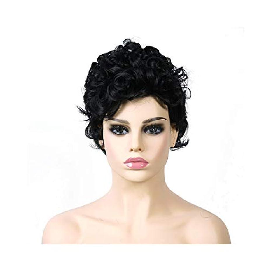 線形とても多くのイブニングYOUQIU 女性のふわふわショートカーリーウィッグテクスチャファッション気質ウィッグウィッグ (色 : 黒)