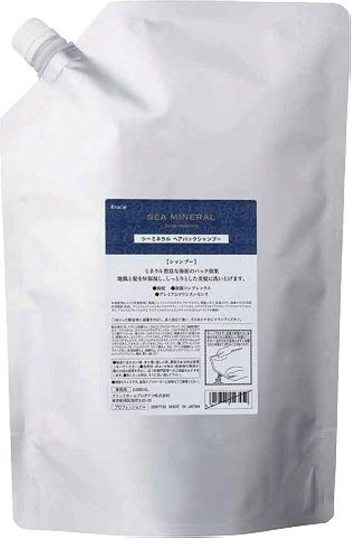 離婚区大kracie(クラシエ) SEA MINERAL シーミネラル シャンプー 2000ml 詰替え 容器1本サービス