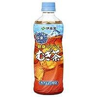 伊藤園 健康ミネラルむぎ茶 冷凍ボトル 485mlペットボトル×24本入
