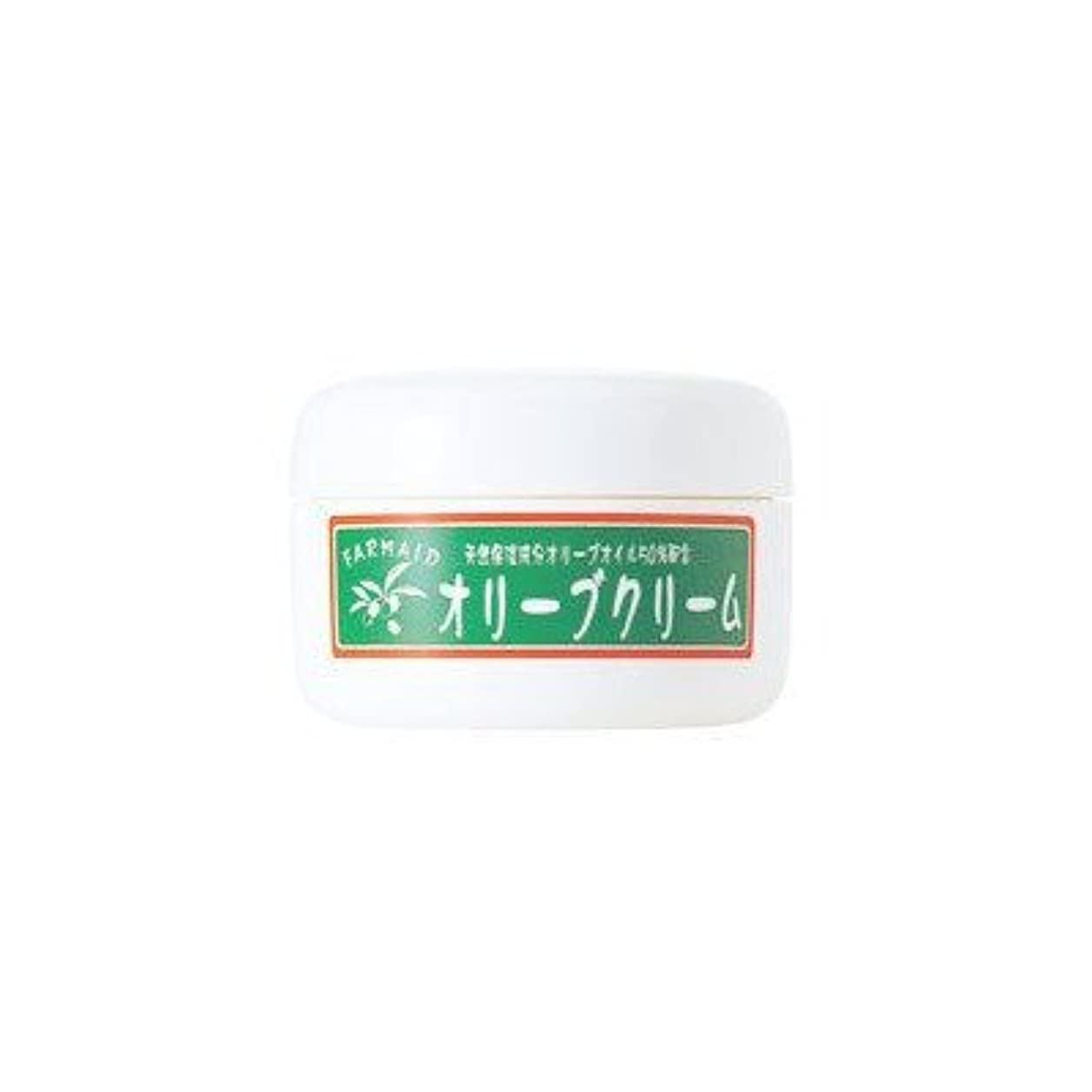 困難酸化物ピルオリーブマノン ファーメイド オリーブクリーム (スキンクリーム) 4個