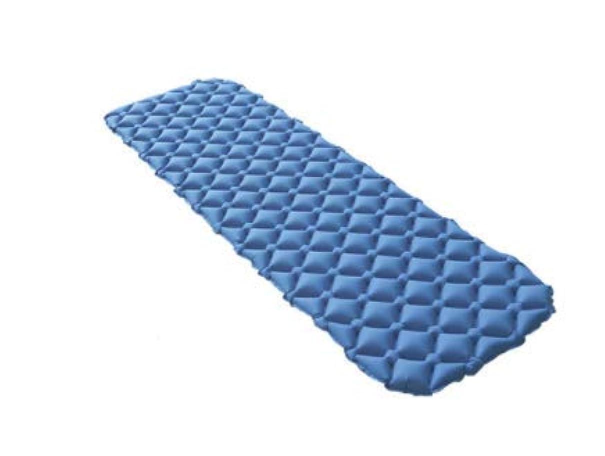 それる整然とした農場超軽量防水屋外寝台ポータブル旅行多機能防湿TPUインフレータブルクッションキャンプ厚い空気ベッド (Color : ブルー)
