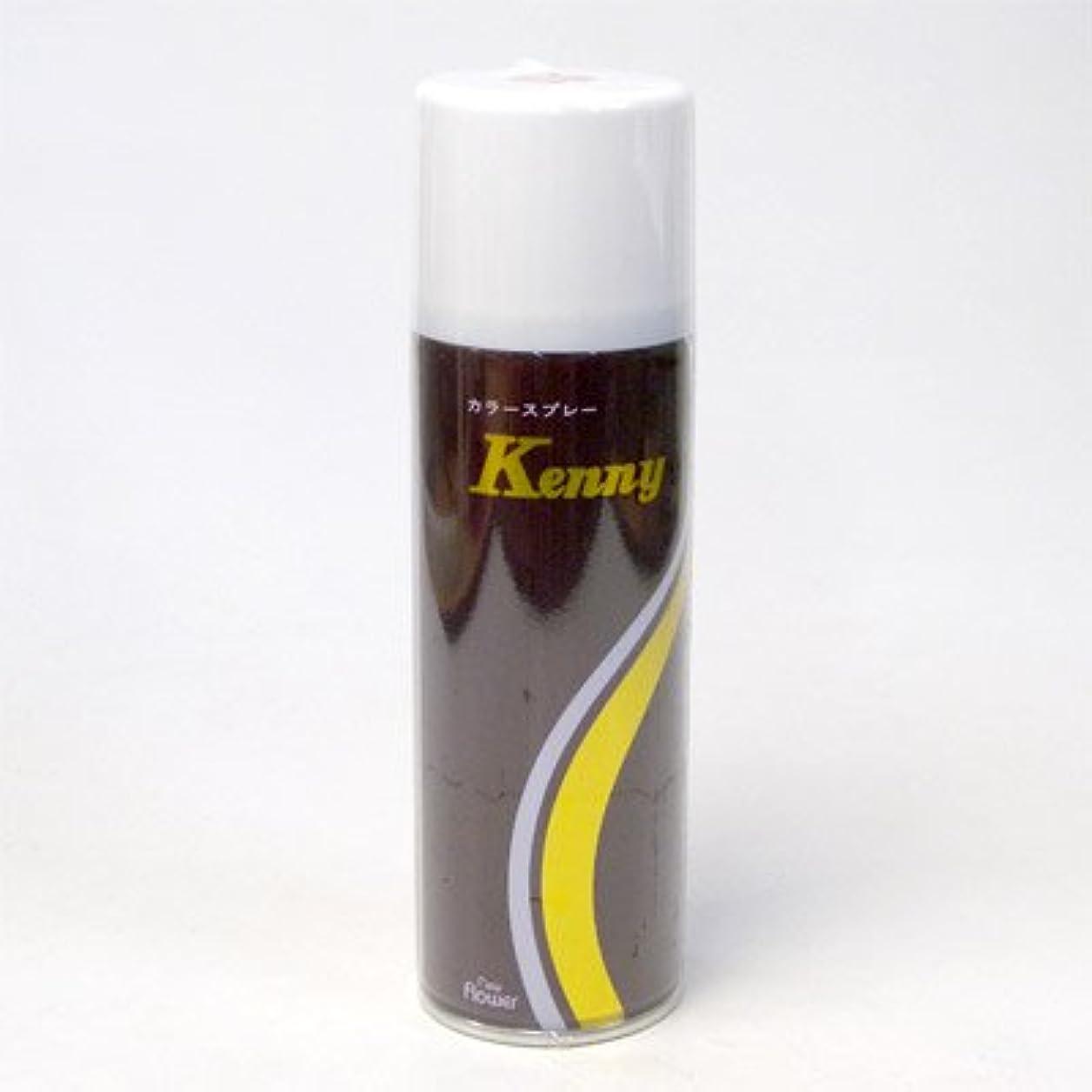 ハングけん引月ケニーカラースプレーL 125g 茶 (ブラウン)