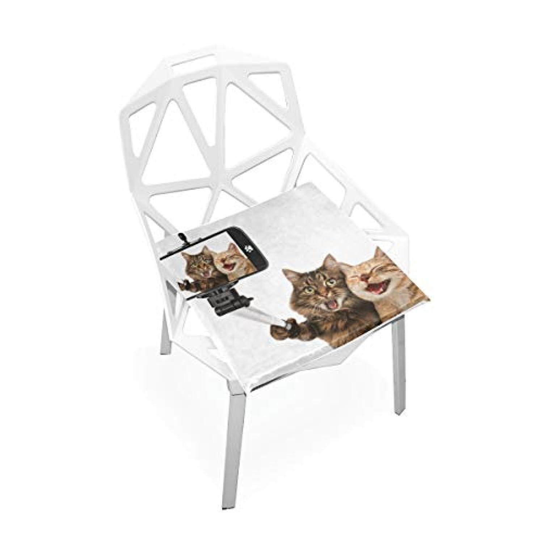 座布団 低反発 自分撮り ねこ ビロード 椅子用 オフィス 車 洗える 40x40 かわいい おしゃれ ファスナー ふわふわ fohoo 学校