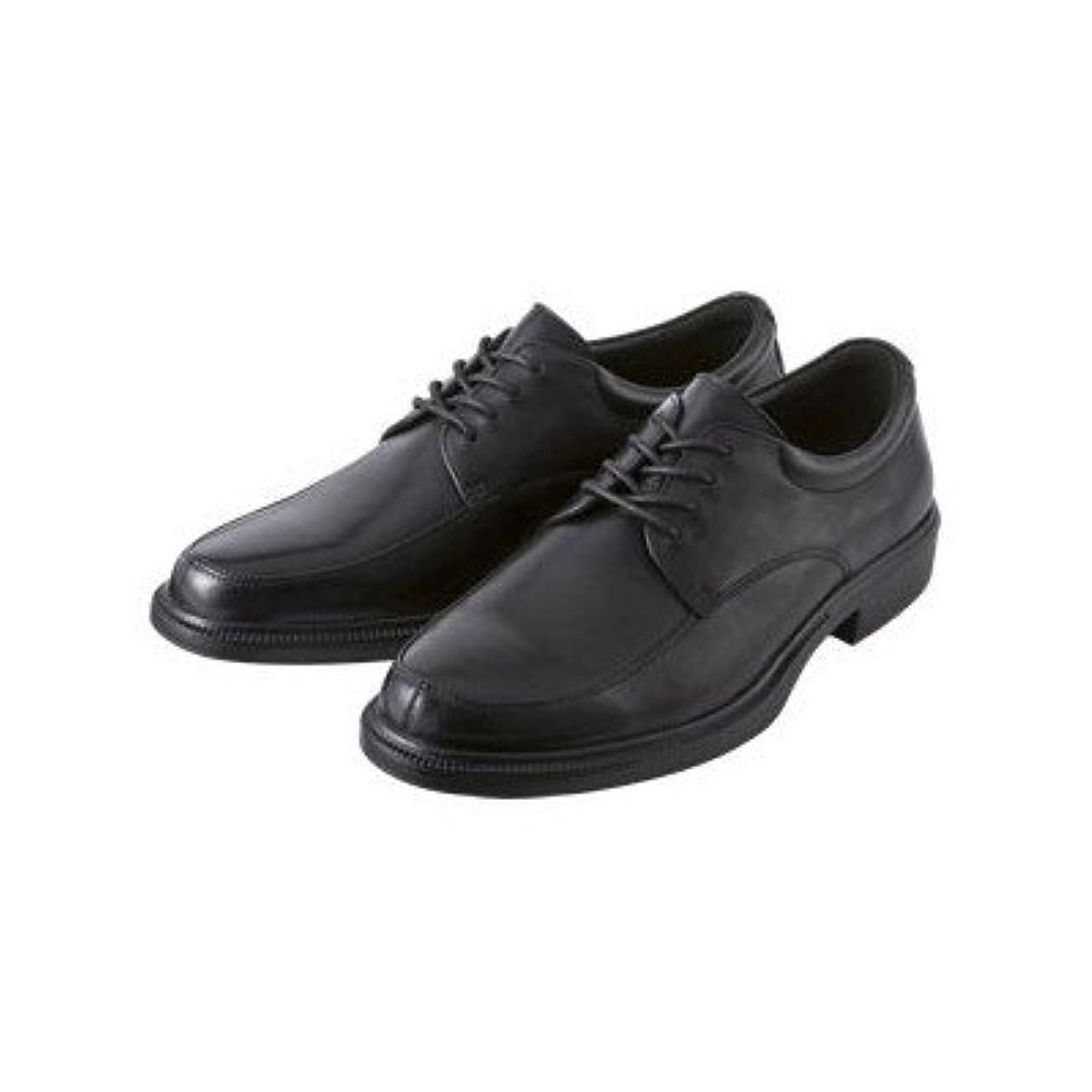 愛情スカーフスクランブル(ドクターアッシー) Dr.ASSY スニーカー (6045) メンズ 4E ビジネス 通勤 シューズ 靴