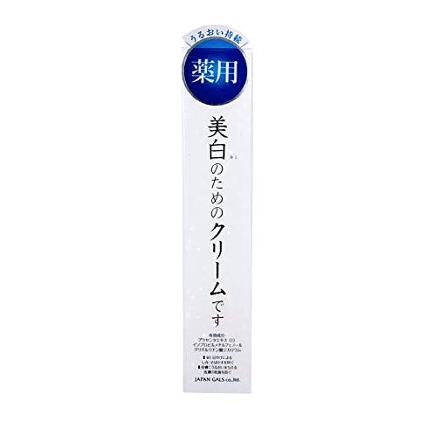 ビジネスチョコレート修正【医薬部外品】ホワイトセラムクリーム 40g