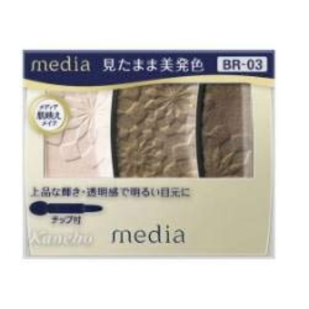 メトロポリタン一般的なのために【カネボウ】 メディア グラデカラーアイシャドウ BR-03
