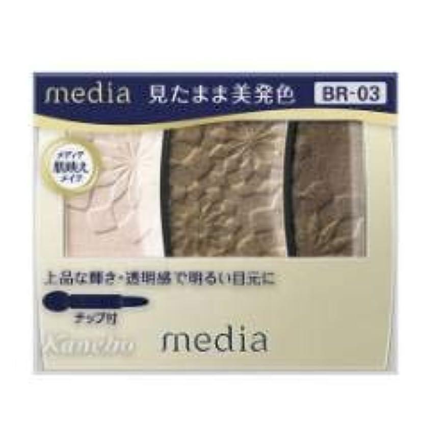 保険扱いやすいスチュアート島【カネボウ】 メディア グラデカラーアイシャドウ BR-03