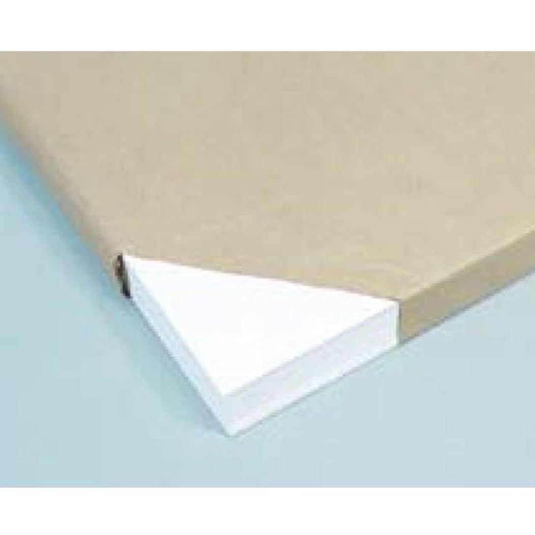 子孫逆さまに単なる画用紙(100枚)厚口4切【絵画?画材 画用紙?パネル】BB10113