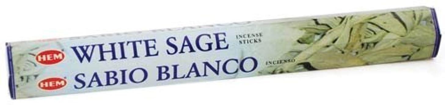 ジュニア活発甘美なWhite Sage HEM Stick Incense 20gms by Sage Cauldron [並行輸入品]