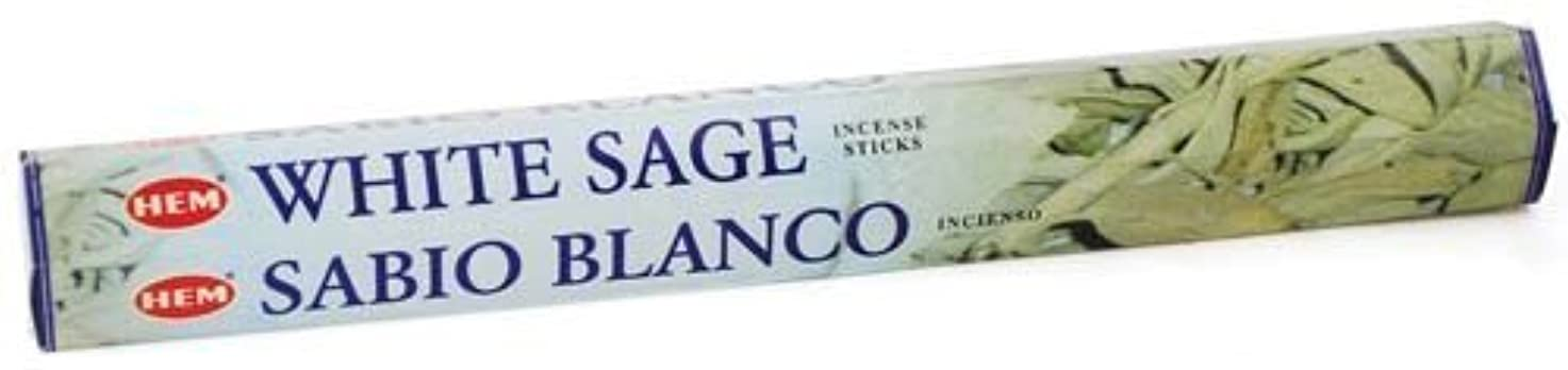 海賊引退するルームWhite Sage HEM Stick Incense 20gms by Sage Cauldron [並行輸入品]