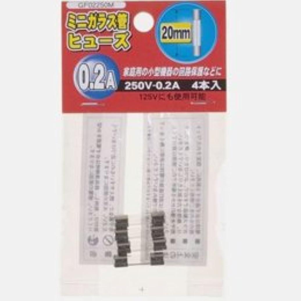 適用済みバレルマザーランド【まとめ 2セット】 YAZAWA ミニガラス管ヒュ-ズ20mm 250V GF02250M