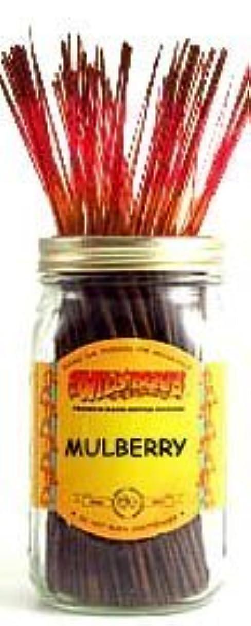 キャプテンブライきらめく誤解させるMulberry - 100 Wildberry Incense Sticks [並行輸入品]