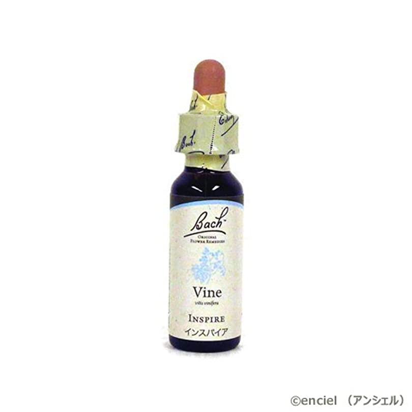 精神医学尾大声でバッチフラワー レメディ バイン(VINE) 10ml グリセリンタイプ 日本国内正規品