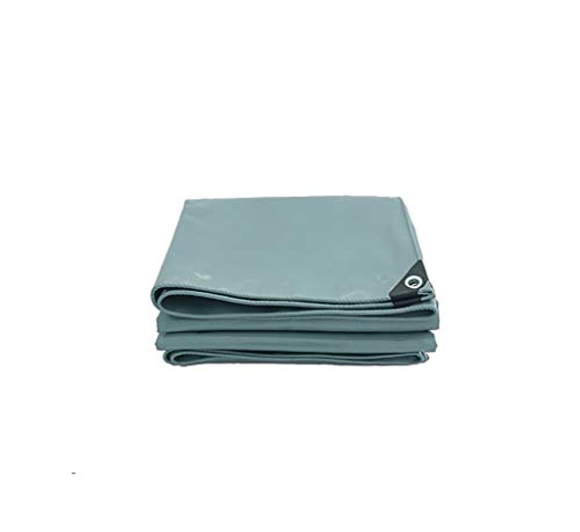 散らすすすり泣き伝染性Tarpaulin 屋外家庭用ピクニックキャンプ/オプションの6色のための防水ポンチョ厚い編み上げターポリン Garden tent (Color : Gray, Size : 2*2m)