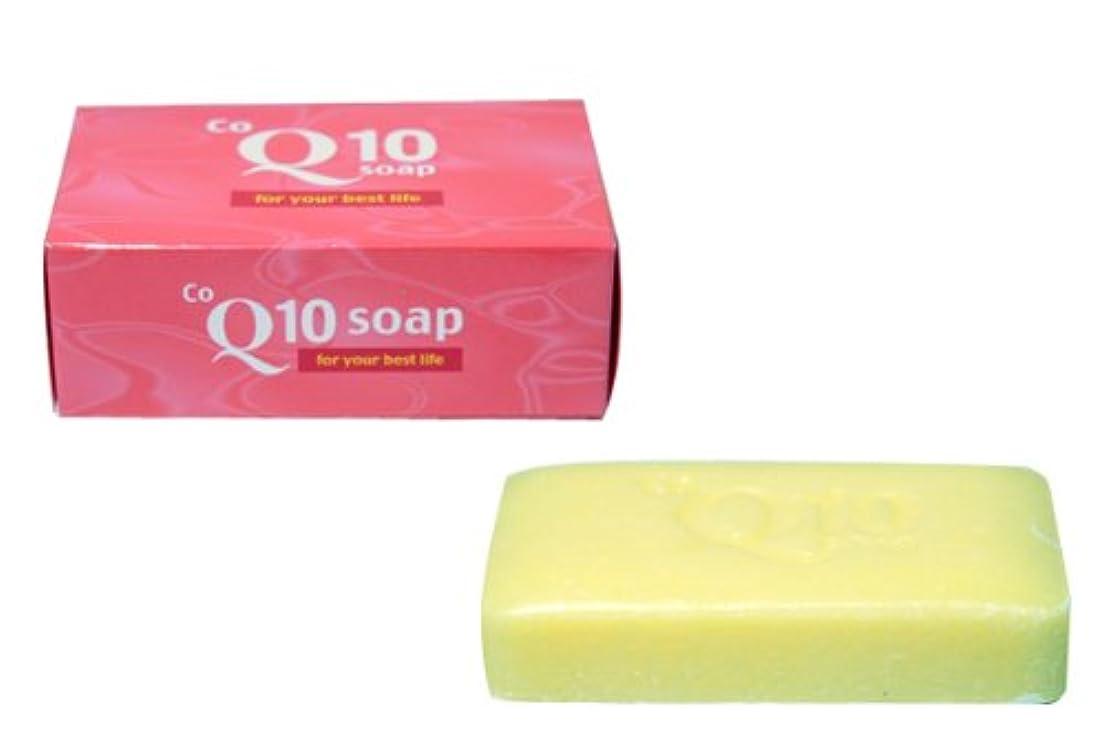 紫のパラシュート側面コエンザイムQ10石鹸 5個セット