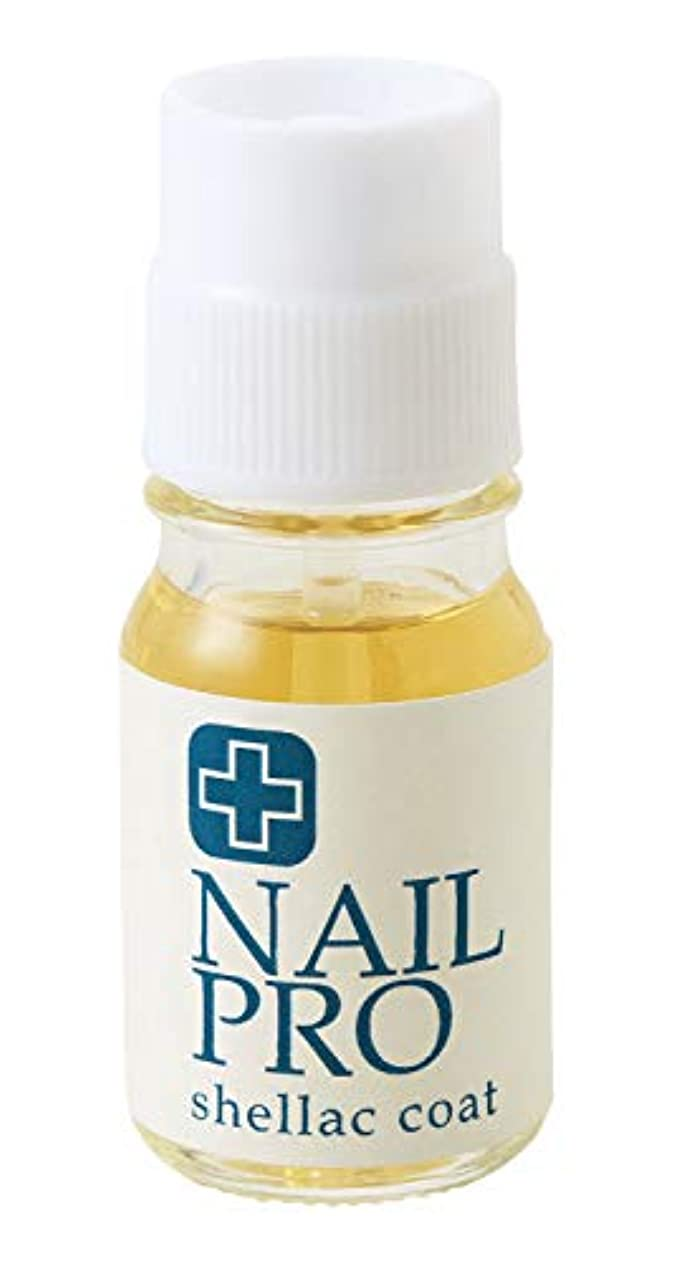 混合した汚染された誘惑ビューナネイルプロ セラミックコート 爪 オイル 割れ 保湿 つや 美容液 保護