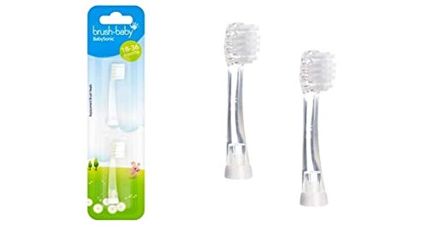 フィールドシフト先駆者Brush-Baby BabySonic 2 x Refill brush heads for 18-36 months - ブラシ - ベビーBabySonic 2 x詰め替えブラシヘッド18-36ヶ月間