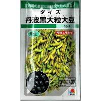 タキイ種苗 丹波黒大粒大豆 40ml