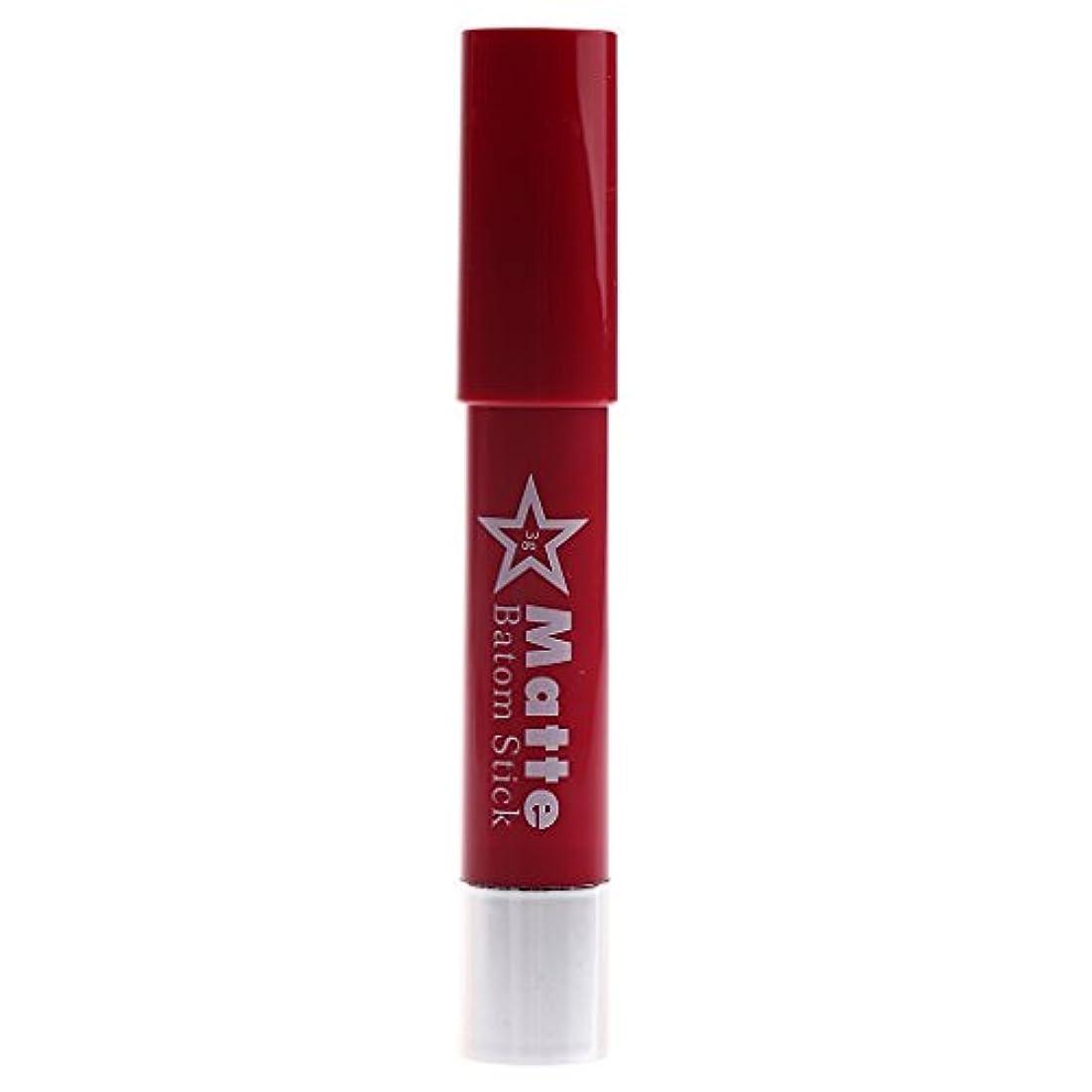 誕生仕様分割Toygogo 着色が容易な長続きがする防水の唇の鉛筆女性マットのビロードの口紅