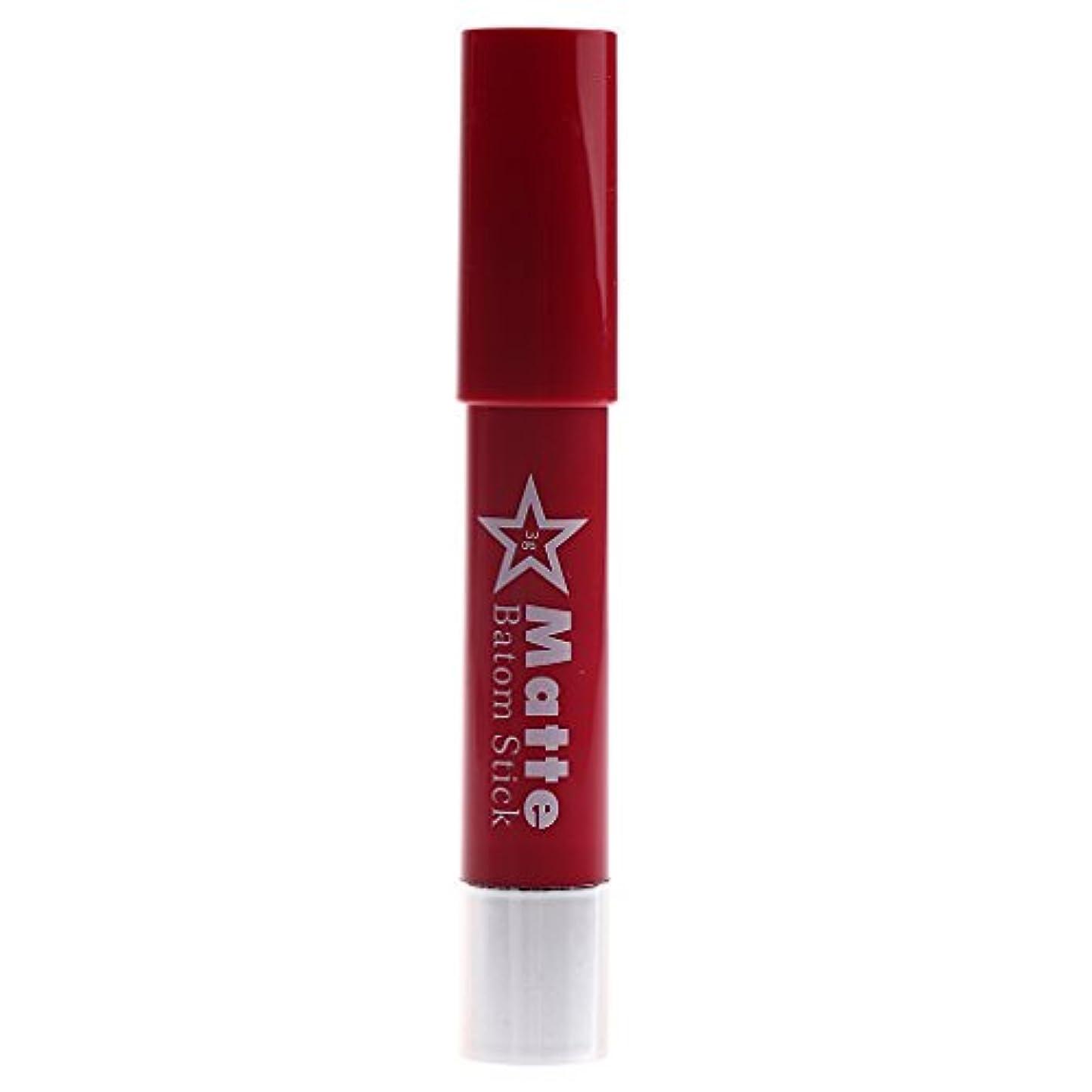 フォーマット海峡周波数長時間の防水リップペンシルマットベルベット口紅リップグロス化粧品