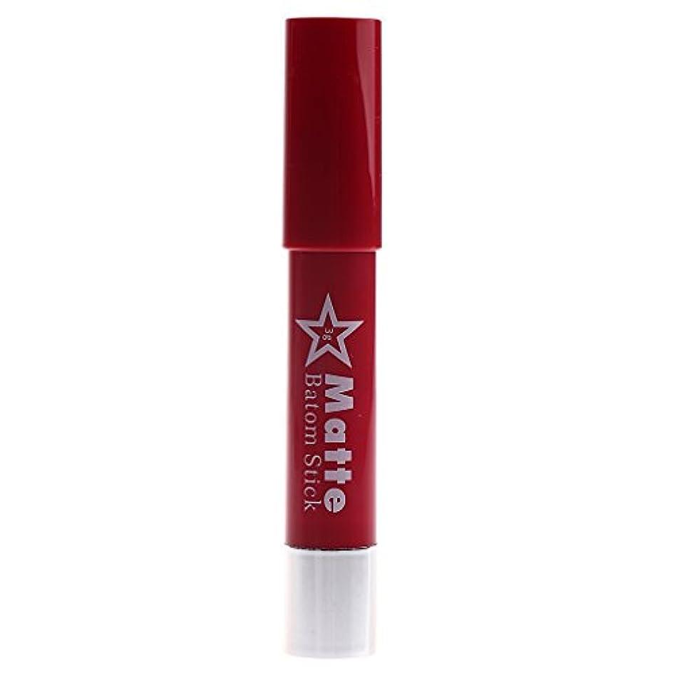 質量ピッチ見る長時間の防水リップペンシルマットベルベット口紅リップグロス化粧品