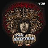 Erykah Badu - New Amerykah Part One : 4th World War
